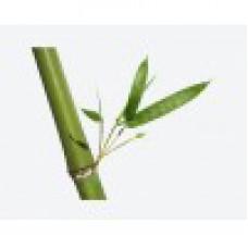Отвар бамбука для волос