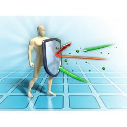Підвищення іммунітету